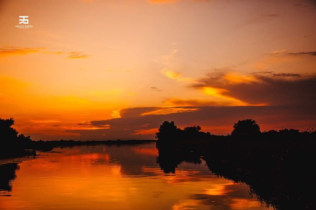 apus-soare-in-delta